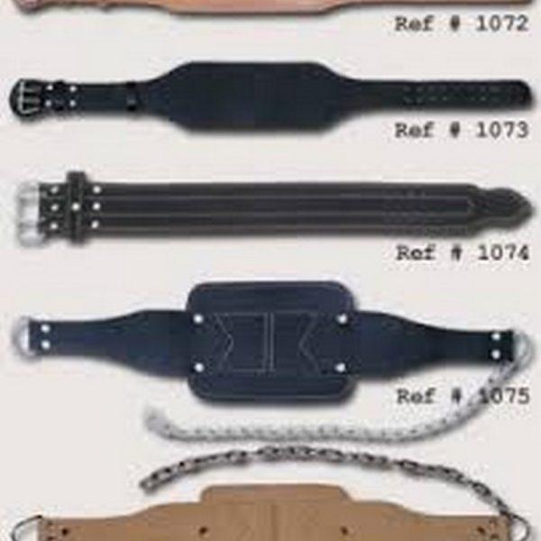Exercise belt