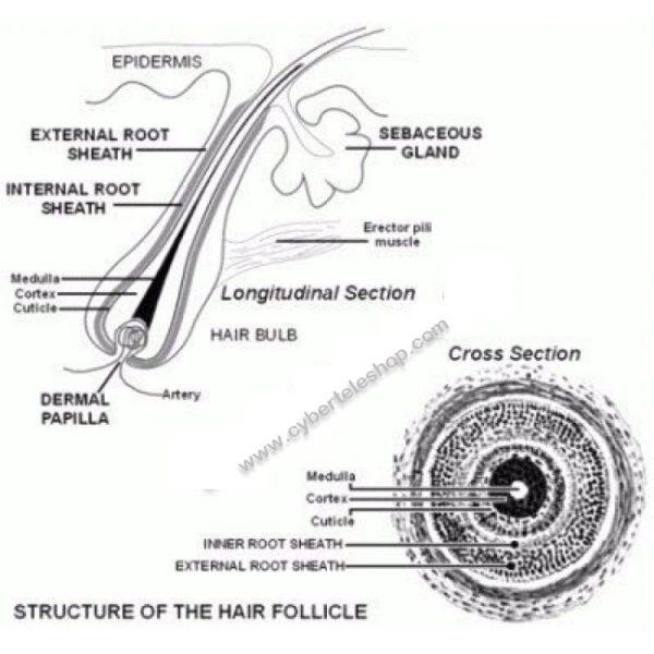 Hair Building Fiber Oil in Pakistan