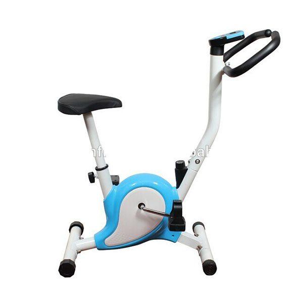 Cardio Workout Cycling Machine PK