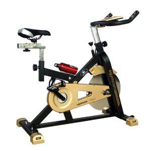 Huijun Spinning Bike HJ-B528 PK