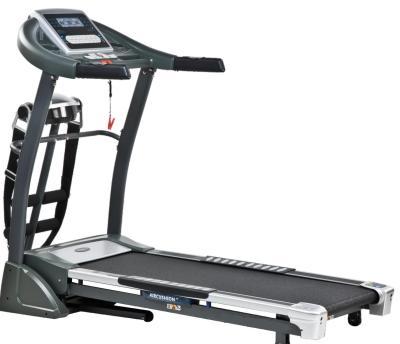 WRM 5300 Multi-Functional Electric Treadmill